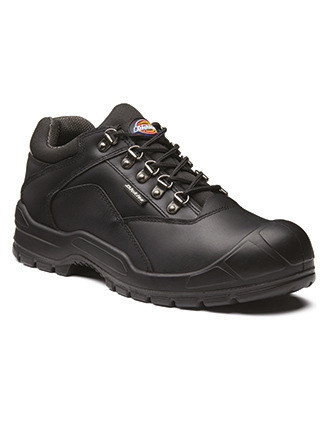 Norden II Safety Shoe